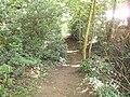 Burton Wood footpath 5.JPG