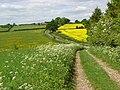 Byroad and lane near Egbury - geograph.org.uk - 813613.jpg
