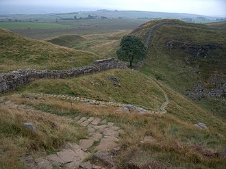 "Robin Hood: Prince of Thieves - Sycamore Gap at Hadrian's Wall, today known as the ""Robin Hood Tree"""