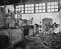 Cacao fermenting boxes in Java. From the last box the beans are shovelled into the washing basin. Reproduced from van Hall's Cocoa, by permission of Messrs. Macmillan & Co. In Cocoa and Chocolate, by Arthur W. Knapp,.jpg