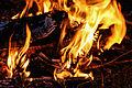 Campfire (15188427593).jpg