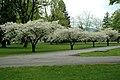 Canada Education Park - Landscaping (7152350779).jpg