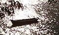 Canoero dormido - panoramio.jpg