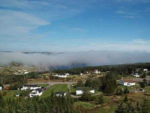 Caplin Cove - Overlooking the Main Road, Community Of Caplin Cove