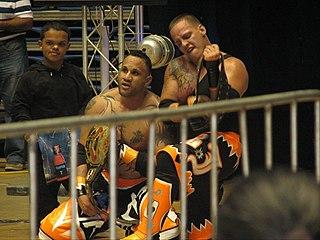 Carlos Cotto Puerto Rican professional wrestler