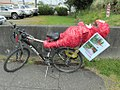 Carrying a pinata on my bike (9057338062).jpg