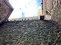 Cashel Cathedral, Rock of Cashel, Caiseal, Éire (45867358714).jpg