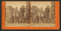 Cathedral Spires, 2200 feet, Yosemite Valley, Mariposa County, Cal, by Watkins, Carleton E., 1829-1916.png
