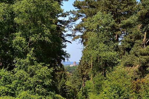 Cathedral View, Chantry Wood, Guildford