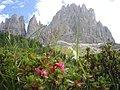 Catinaccio Alto Adige - panoramio.jpg
