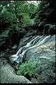 Catoctin Mountain Park, Maryland (7c421a7b-c30e-4b30-b89f-f7b5ddad9997).jpg