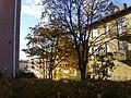 Centrumgatan i Boxholm, den 12 oktober 2008, bild 1.JPG