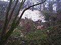 Chalk Clff, Undercliff - geograph.org.uk - 1184327.jpg