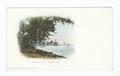 Chautauqua Lake, Steamer Landing, Chautauqua, N. Y (NYPL b12647398-62034).tiff
