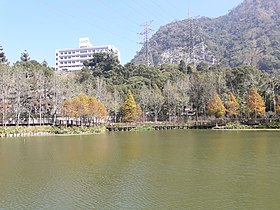 Checheng Log Pond.jpg