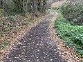 Chemin Mussiat - Crottet (FR01) - 2020-12-03 - 2.jpg