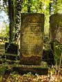 Chenstochov ------- Jewish Cemetery of Czestochowa ------- 167.JPG