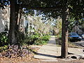 Cherokee Freret NOLA Xmas Tree.JPG