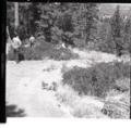 Chief Park Ranger Nick Nicholson and Park Superintendent Robert C. Heyder surveying the illegally constructed dirt road from (ab8101c0ced84624bdfb7455a1f8bbfa).tif