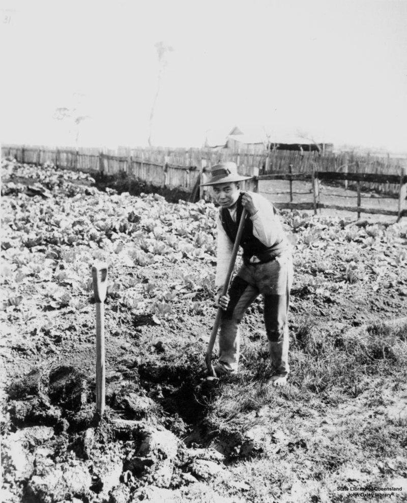 Chinese gardener, ca. 1893 121707.jpg