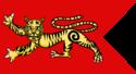Флаг династии Чола