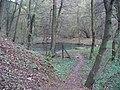 Chuchelský háj, rybník nad lázněmi.jpg
