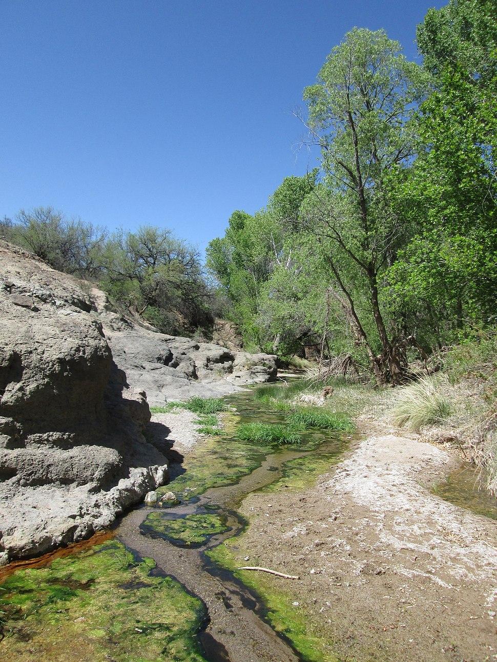 Cienega Creek Natural Preserve Pima County Arizona 2014