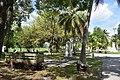 City of Miami Cemetery (6).jpg