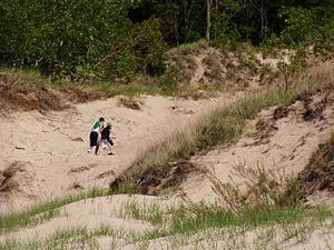 Westchester Township, Porter County, Indiana - Indiana Dunes State Park