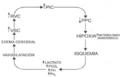 Control químico del FSC.png