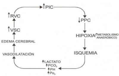 Definición de hipertensión venosa en el cerebro