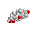 Cortisol-spacefill(white background).PNG