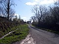 Country Road - geograph.org.uk - 1248476.jpg