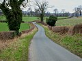 Country road near Ainderby Myers - geograph.org.uk - 139448.jpg