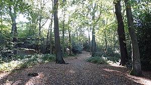 Croham Hurst - Image: Croham Hurst path