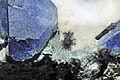 Crossite, bénitoïte, neptunite, joaquinite-(Ce), natrolite, serpentine 1.JPG