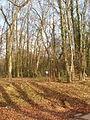 Crosslane Wood by Lodge Lane, near Little Chalfont - geograph.org.uk - 123808.jpg