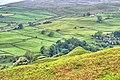 Cuckoo Hill - geograph.org.uk - 837385.jpg
