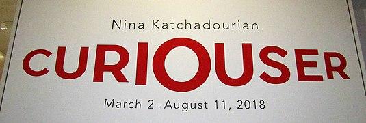 Nina Katchadourian Curiouser