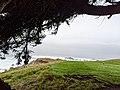 Cypress Point.jpg