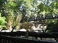 Dallas Zoo Monorail.jpg