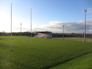 Dalziel Park - The main pitch of Dalziel Park, with a grandstand, capable of holding 384 spectators.