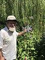 Dans le jardin Giverny.jpg