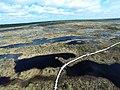 Daudz mazu ezeriņu Tīreļpurvā- skats no augšas - panoramio.jpg