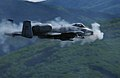 Defense.gov News Photo 070529-F-4127S-238.jpg