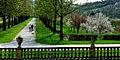 Der Schlosspark Weikersheim im Frühling. 03.jpg