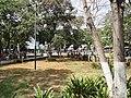 Detalle de jardinería 1.jpg
