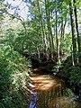 Dick Brook looking east from footbridge - geograph.org.uk - 1490159.jpg