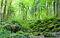Die Gaishölle (Sasbachwalden) jm53059 ji.jpg