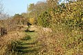 Dismantled railway at the canal viaduct, Radford Semele - geograph.org.uk - 1556348.jpg